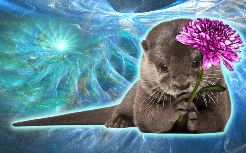 otter_flower_by_socialsplash-d6zvljh.jpg