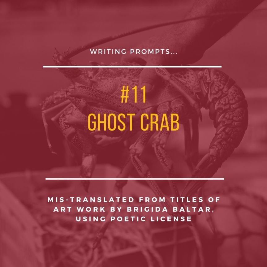 #11 Ghost Crab