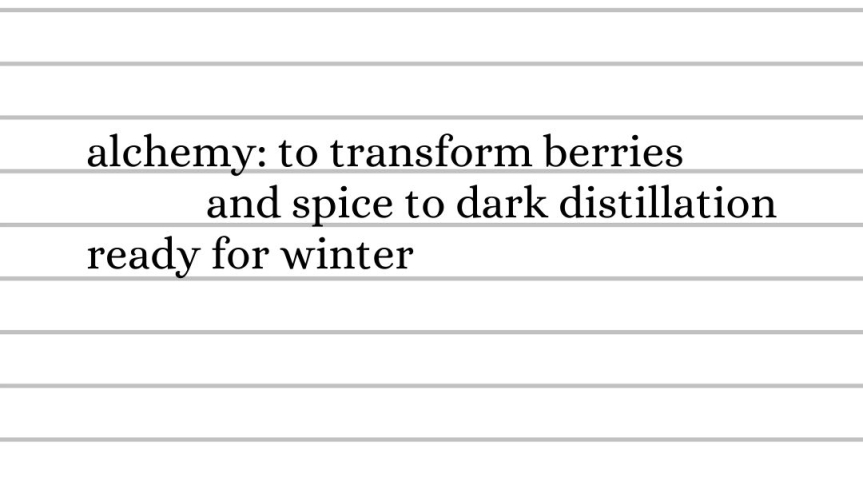 alchemy: to transform berries and spice to dark distillation ready for winter