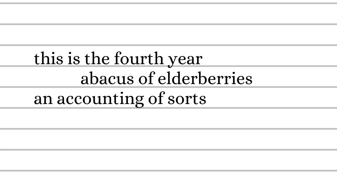 this is the fourth year, abacus of elderberries, an accounting of sorts
